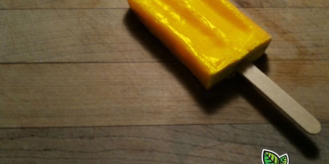 Freeze Dried Mango Pineapple Popsicles