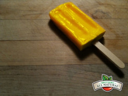 Freeze Dried Apple Banana Popsicle